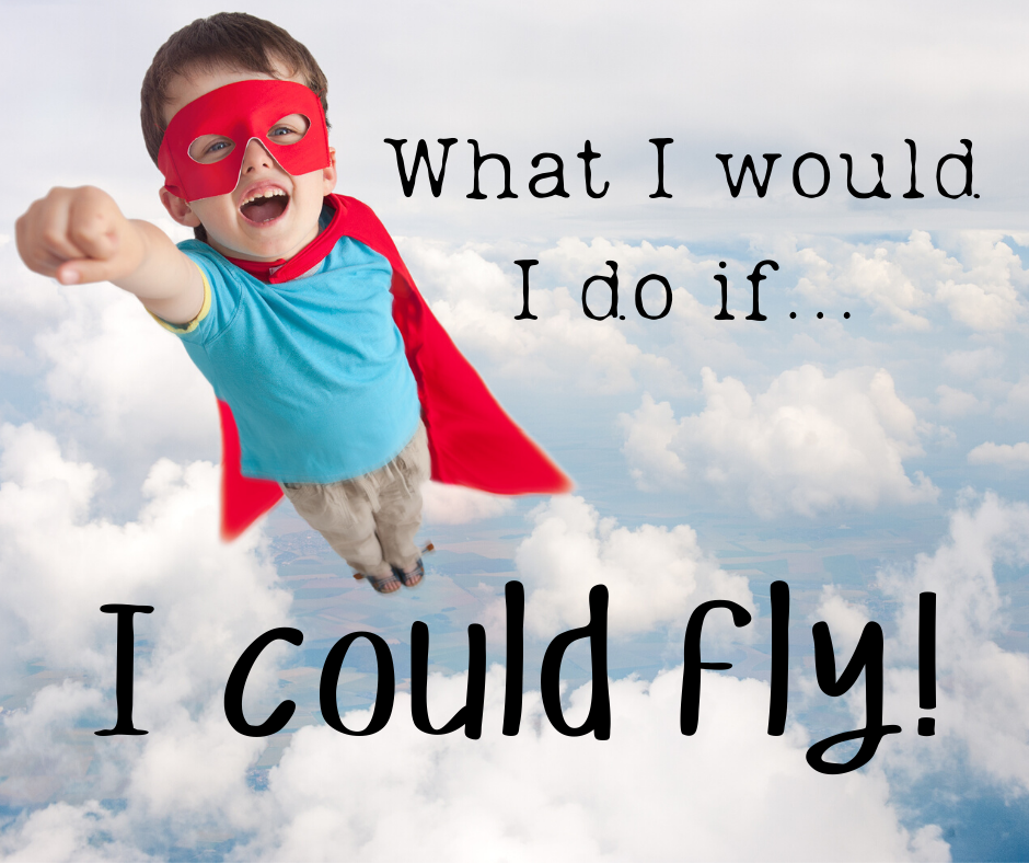 What I would do if I could fly